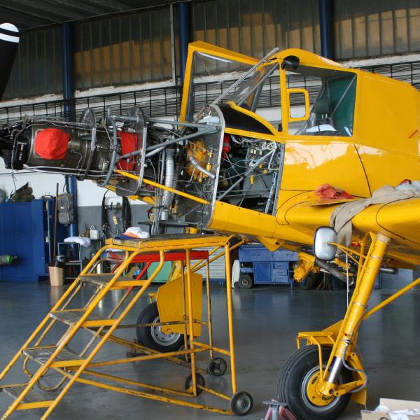 Zlin Z-137T – AG