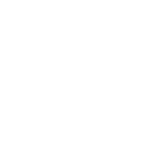 VIP Airliner